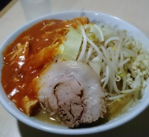 「フュージョン 800円」@蒙麺 火の豚の写真