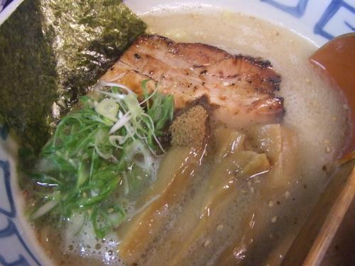 「濱塩白湯 700円」@濱塩らぁめん 白虎の写真
