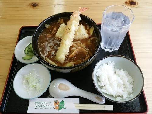 「自家製カレーうどん(並盛)980円」@手打ちそばやさん うどんやさんの写真