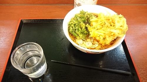 「春菊天そば+かき揚げ」@八起家 高崎店の写真