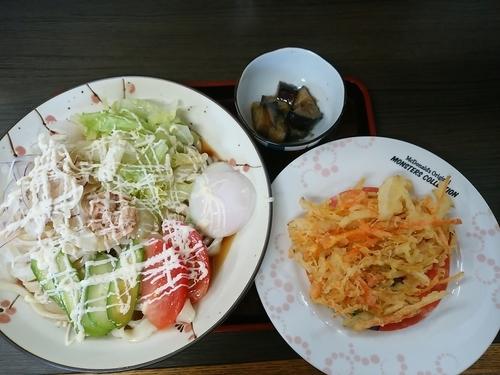 「サラダうどん(並盛)+天ぷらセット700円→500円」@手打ちうどん たらっぺの写真
