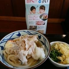 丸亀製麺 足立店の写真