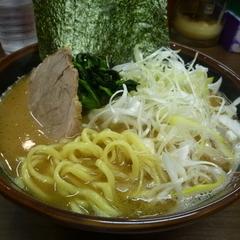 横浜家系豚骨醤油極太麺 侍 池下店の写真