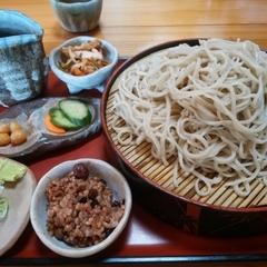 手打ち蕎麦処 京屋の写真