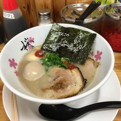 麺屋 桜息吹の写真