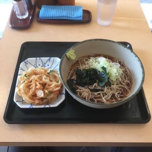 「冷やしぶっかけ蕎麦 (回数券 限定商品)」@名代 箱根そば 成城学園前店の写真