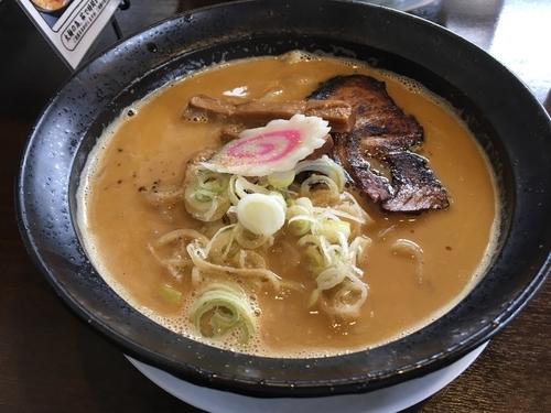 「鶏白湯ラーメン800」@麺屋 大金星の写真