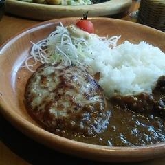 ハンバーグレストラン びっくりドンキー 足立東和店の写真