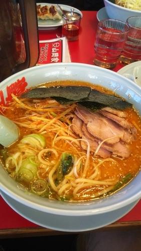 「特製味噌ネギチャーシュー麺」@ラーメン山岡家 羽生店の写真