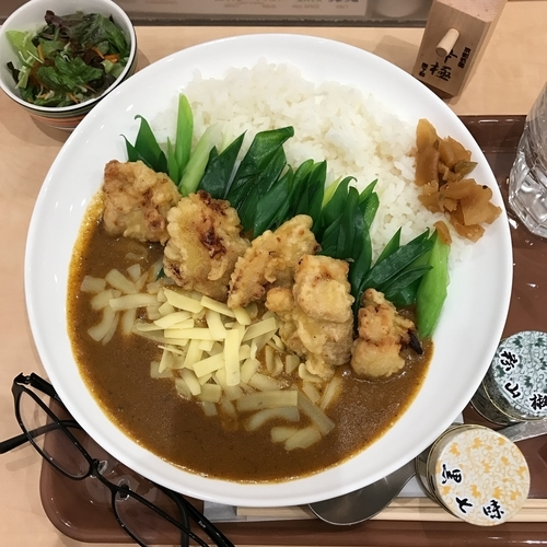「とり天カレー+チーズ」@原了郭 京都駅 八条口店の写真