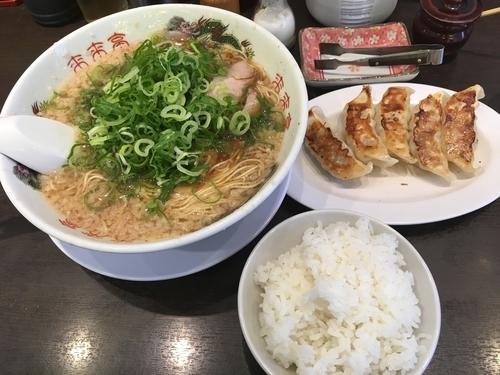 「平日限定 餃子定食(ラーメン中1.5玉+餃子5個+小ライス)」@来来亭 小平仲町店の写真