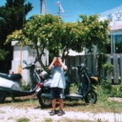 青空食堂の写真