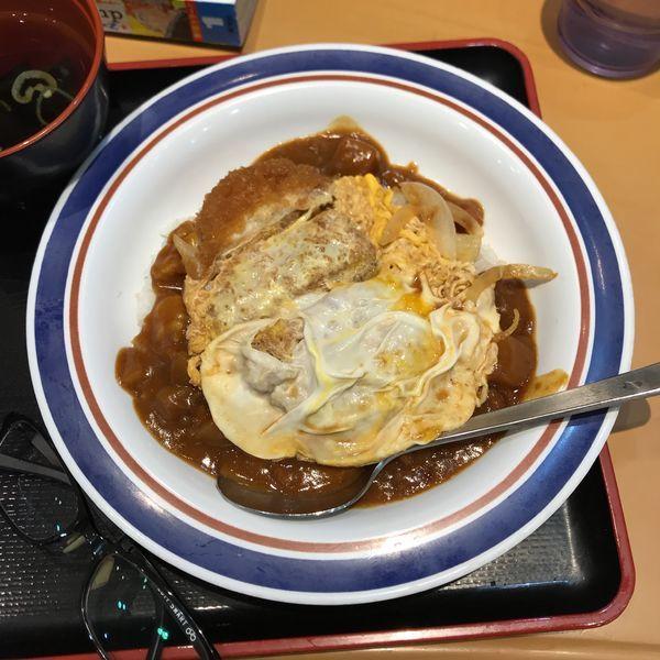 「カレーかつ丼」@名代富士そば 池袋西口店の写真