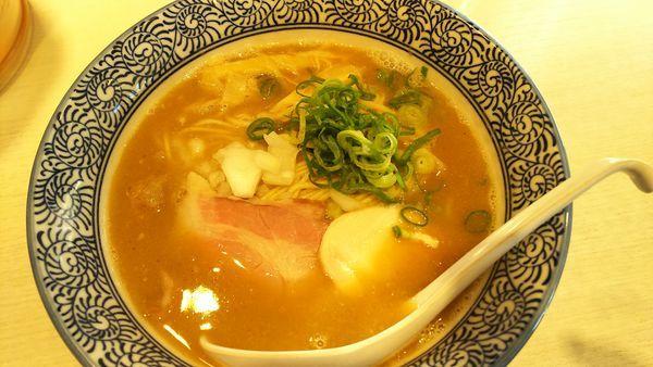 「濃厚煮干し鶏白湯ラーメン」@麺屋カモメ亭の写真