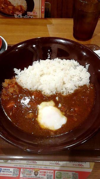 「ポークカレー1.5倍」@すき家 品川東店の写真