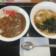 山田うどん 小山新4号バイパス店の写真
