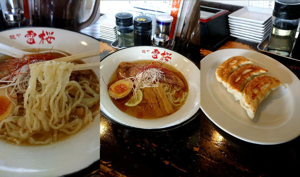「夏期限定『冷やしラーメン』と『餃子3個』」@麺や 雷桜の写真