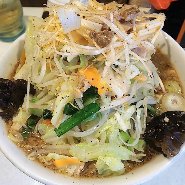 「背脂入りしょうゆたんめん(中・太麺)+ピリ辛白髪ネギ」@麺処 まるよし商店の写真