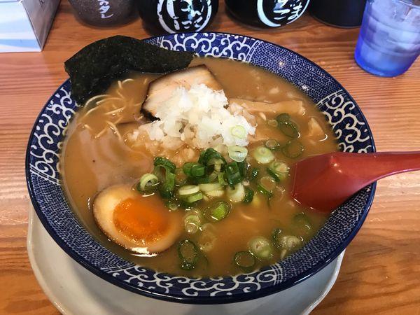 「煮干し豚骨拉麺(麺:カタ)」@博多ラーメン鶴亀堂 春日部ユリノキ店の写真