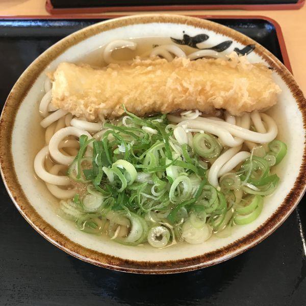 「かけ(小)(¥380)+いか天(¥120)」@渡邉うどんの写真