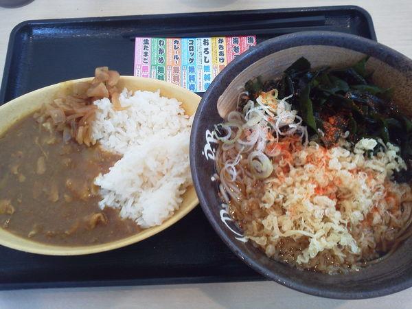 「ミニカレーセット550+わかめ100=650円」@ゆで太郎 入間宮寺店の写真