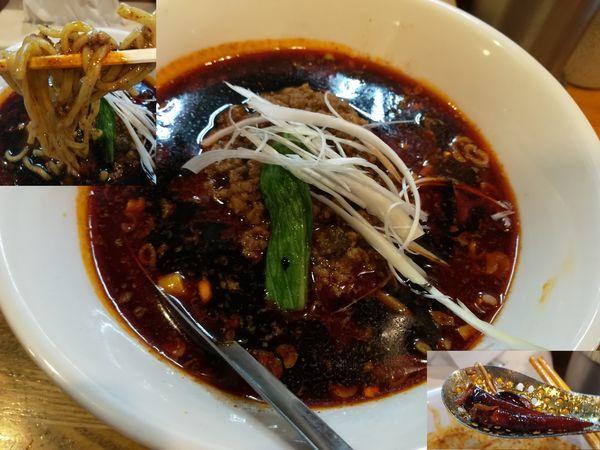 「8/20 成都式汁あり担々麺・大(辛さ3、痺れ3)1,000円」@Dandan spicy noodlesの写真