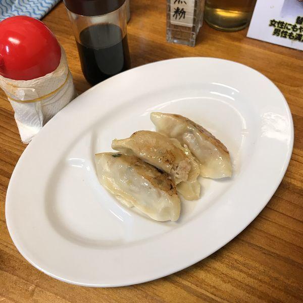 「しょうが餃子(半)」@元祖敏々亭 びんびんの写真