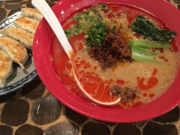「タンタン麺+龍神ぎょうざ」@つけめん・らーめん活龍の写真