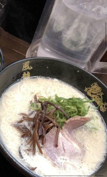 「ラーメン」@とんこつラーメン博多風龍 上野店の写真