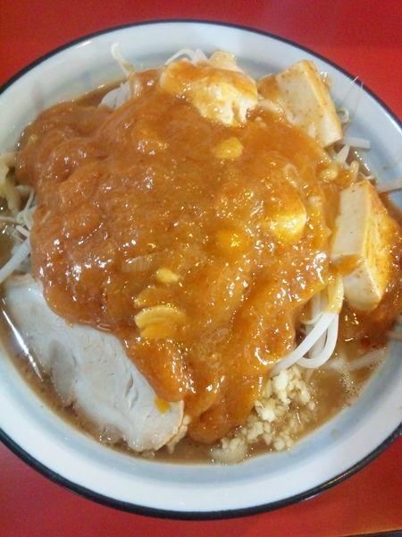 「フュージョン800円」@蒙麺 火の豚の写真
