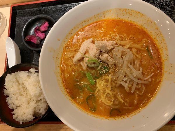 「旨辛パイタン麺(サービス麺大盛無料+ご飯)」@水炊き・焼鳥 とりいちず 小岩北口店の写真