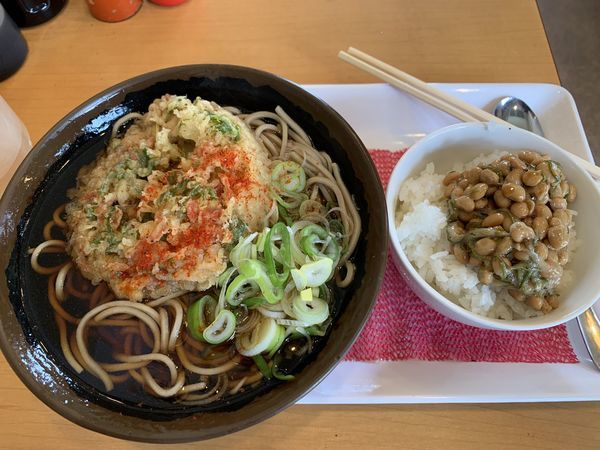 「天ぷらそば+めかぶ納豆ミニ丼セット 550円」@木曽路の写真
