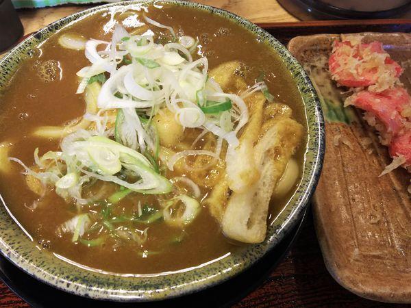 「カレー¥590+紅生姜天¥100」@いわしやの写真