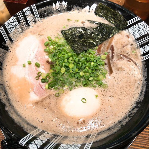 「味玉ラーメン ¥730」@博多一双 博多駅東本店の写真