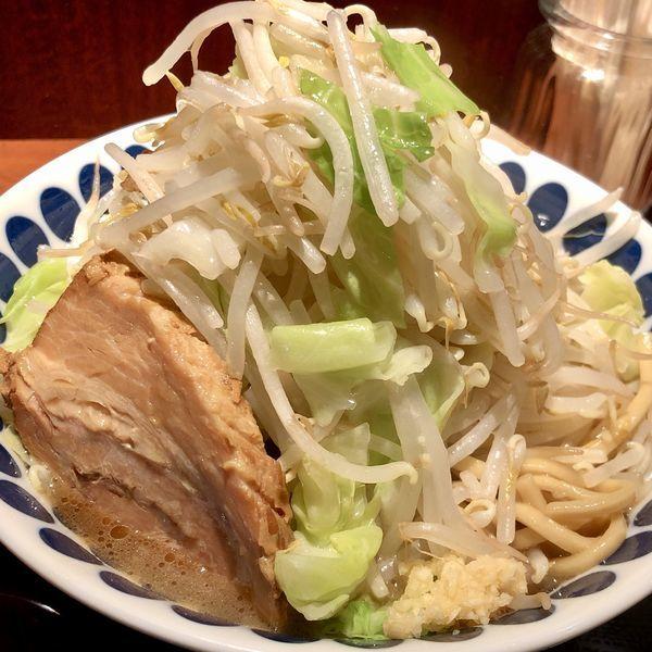 「背脂豚骨らーめん(中盛200g 野菜多め ニンニク少なめ)」@中華そば 蓮の華の写真