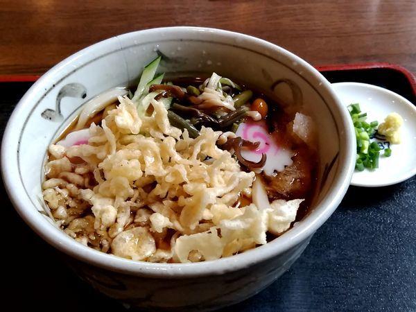 「冷やしたぬきうどん(並盛)550円」@蕎麦処 もりやの写真
