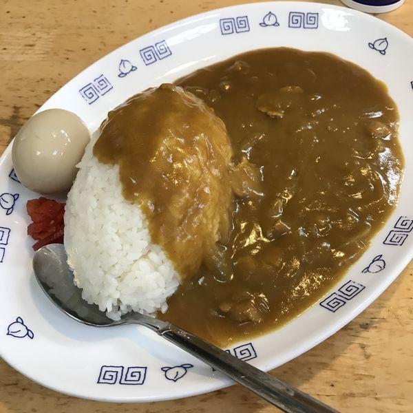 「カレーライス(¥500)+玉子(¥100)」@中華そば さとうの写真
