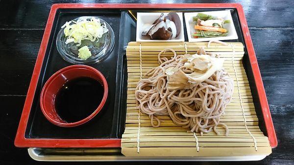 「(夏季限定)きのこざるそば 700円」@展望大食堂 きのこの館の写真