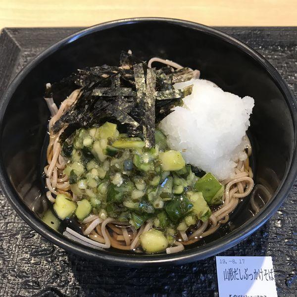 「山形だしぶっかけそば(¥380)」@松のや 武蔵新田店の写真