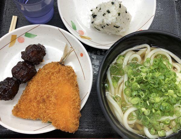 「かけうどん」@あなぶき家 津田の松原サービスエリア(下り線)店の写真