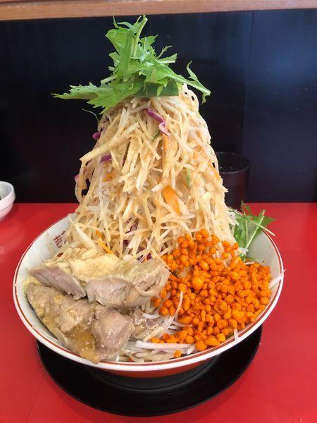 「冷やし中華 麺半分 野菜マシマシ他全マシ」@鷹の目 獨協大学前本店の写真