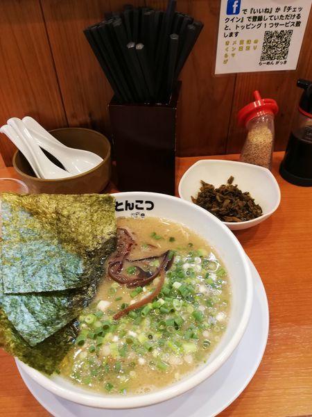 「豚骨ラーメン+高菜  750円」@釜炊きとんこつ がっきの写真